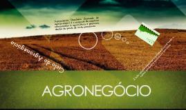 Ciclo do Agronegócio