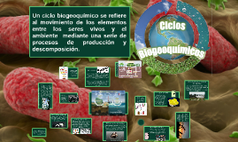 Un ciclo biogeoquímico