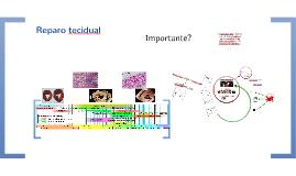 Copy of Reparo tecidual