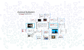 Animal Industry