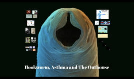 Hookworms, Asthma and The Outhouse