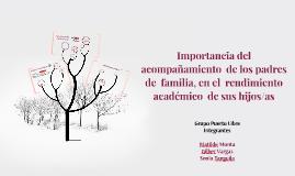 Importancia del  acompañamiento  de los padres de  familia,