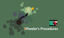 Wheeler's Procedures