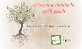 Talent x Inzet x strategie = resultaat