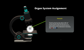 Organ System Assignment ~ Muscular System