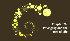 Chapter 25: Phylogeny and the Tree of Life
