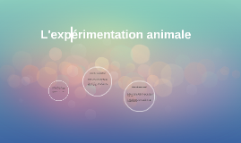 L'exprérimetation animale