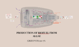 PRODUCTION OF BIOGAS FROM ALGAE