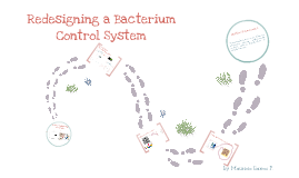 Redesignig a Bacterium Control System