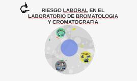 RIESGO EN EL LABORATORIO DE BROMATOLOGIA Y CROMATOGRAFIA