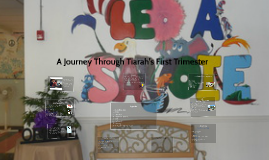 A Journey Through Tiarah's First Trimester