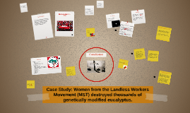 Case Study: Women from the Landless Workers Movement (MST) d