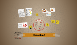 Copy of Hepatitis A
