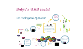 Stress: Selye's GAS model