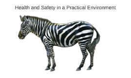 Health and Safety in a Practical Environment
