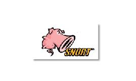 Copy of Snort