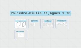 Poliedro-Giulia 11,Agnes 1 7C