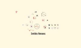 Copy of Sentidos Humanos: Visão