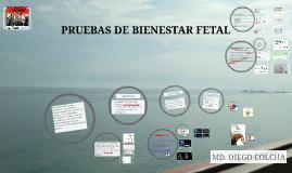 PRUEBAS DE BIENES TAR FETLA