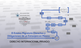 El Estatus migratorio (derechos y obligaciones) de un extranj