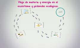 Flujo de materia y energía en el ecosistema y piramides ecol