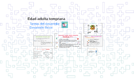 Copy of Edad adulta temprana
