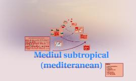 Copy of  Mediul subtropical ( mediteranean )