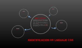 IDENTIFICACION DE LNGUAJEE