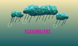FLEXIBILITAT