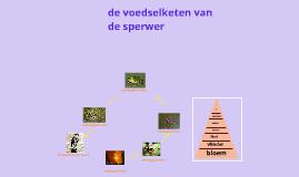voedselketen van de sperwer