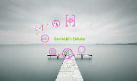 Copy of Excreción Celular.