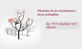 Dinámica de los ecosistemas y áreas protegidas
