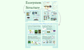 Ecology 1: Climate & Biomes