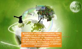 Modelo de cultivo hidropónico para desarrollar  alternativas