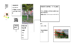 校園植物探索流程