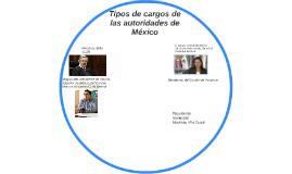 Copy of Tipos de cargos de las autoridades de México