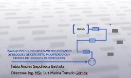 EVALUACIÓN DEL COMPORTAMIENTO MECÁNICO DE BLOQUES DE CONCRET