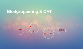 Copy of Blodgruppering & DAT