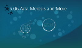 5.06 Advanced Meiosis and More