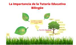 Importancia de la Tutoria Educativa Bilingue LSM