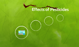 Copy of Effects of Pestcides