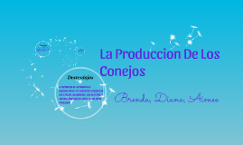 La Produccion De Los Conejos
