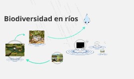 Copy of Biodiversidad en ríos
