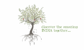 discover the amazing INDIA together...