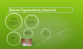 Sistema Tegumentario y Sensorial