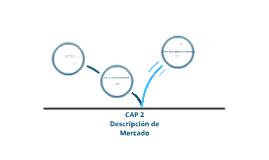 Copy of DESCRIPCION DE MERCADO