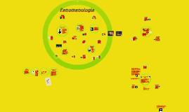 Copy of Fenomenologia