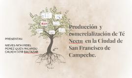 Producción  y comercialización de Té Neem la Ciudad de San F
