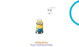 Maestría en educación - Principios