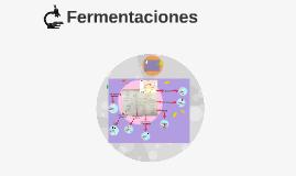 FERMENTACIONES